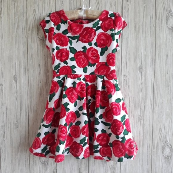 Gymboree Floral Red Roses Dress Size 6